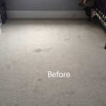 Bedroom-Wall-to-Wall-Carpet-Cleaning-El-Cerrito-A