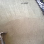 El-Cerrito-Carpet-Cleaning-Company