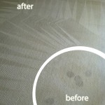 El-Cerrito-Wine-Stain-Carpet-Cleaning